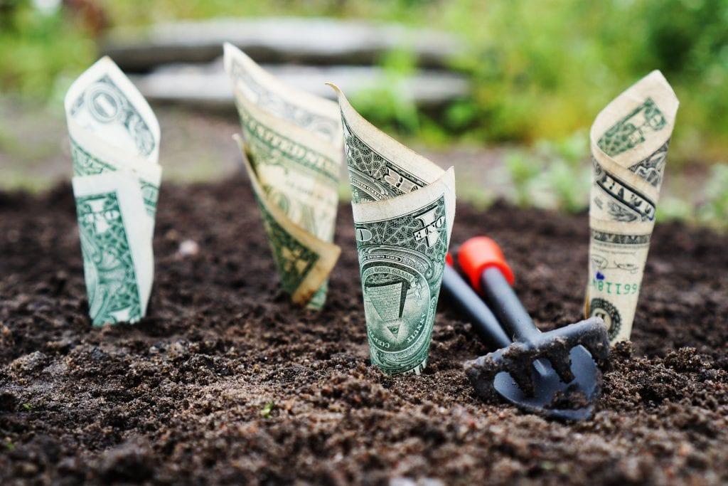 אדמה עם שתילים של כסף ורקע ירוק